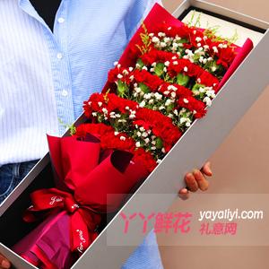 19朵紅色康乃馨點綴滿天星