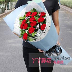 19朵紅色康乃馨綠葉搭配