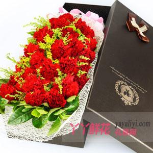 19支红色康乃馨礼盒