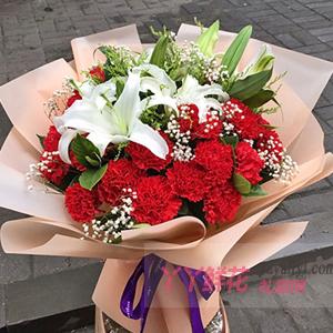 19朵紅色康乃馨2枝多頭百合適量滿天星