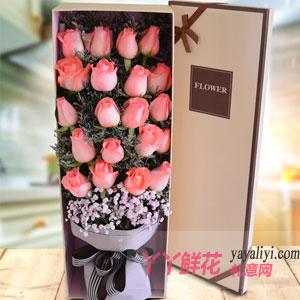 情人节送女朋友19朵粉玫瑰配满天星礼盒(白色款)