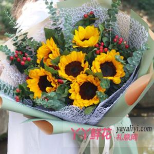 6朵向日葵搭配红豆尤加利叶