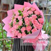 鲜花33朵粉色康乃馨