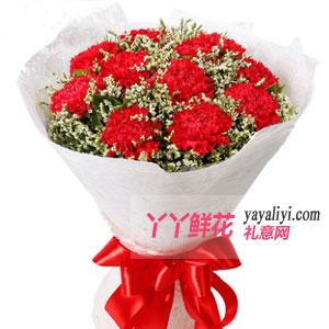 11朵紅色康乃馨
