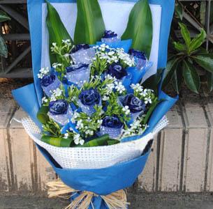 痴痴的爱-鲜花11支蓝玫瑰蓝色妖姬