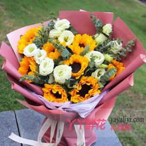 嫂子過生日送8朵向日葵桔梗