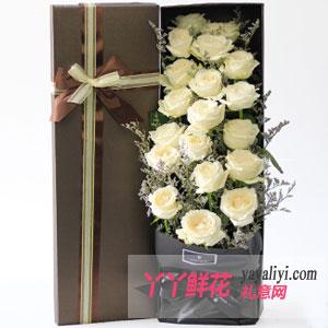 默契-鲜花19支白玫瑰方形礼盒