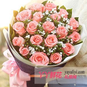 鲜花速递19支粉玫瑰