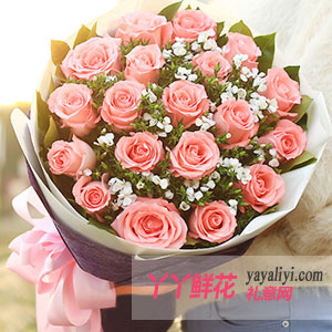 pure love-鲜花速递19支粉玫瑰