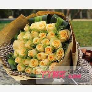 鮮花速遞33支香檳玫瑰
