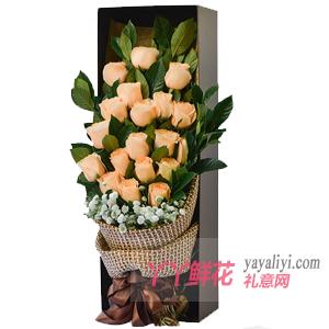 19朵香檳玫瑰梔子葉滿天星禮盒