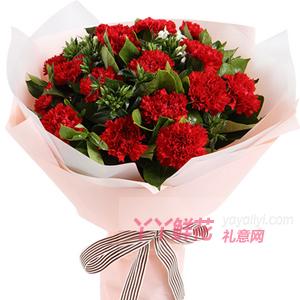 送妈妈生日19朵红色康乃馨5枝白色相思梅