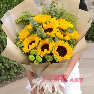 灿烂笑容-9朵向日葵搭配适量绿菊尤加利