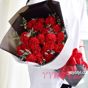 溫馨思念-19枝紅色康乃馨適量情人草