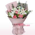 鲜花20枝粉色康乃馨2支百合订购