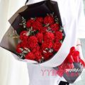 19枝红色康乃馨适量情人草