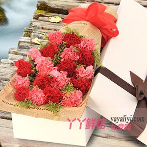 媽媽我愛您-19枝雙色康乃馨白色禮盒