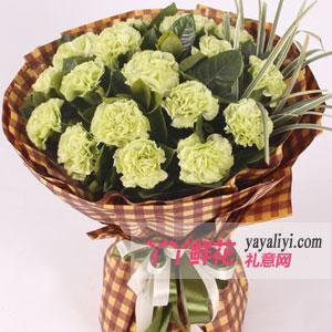 金子般的心-19朵绿康乃馨鲜花速递