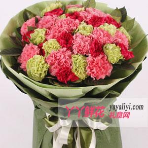 最美好的祝愿-母亲节33朵优质康乃馨