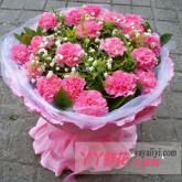 鲜花速递19枝粉色康乃馨