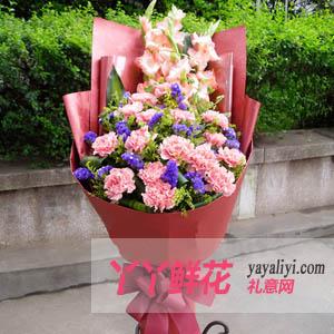幸福心愿-鲜花19枝粉色康乃馨