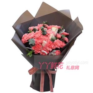19朵粉色康乃馨2朵戴安娜玫瑰搭配銀葉菊尤加利