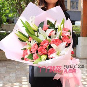 感恩的心:19支粉色康乃馨6枝白百合