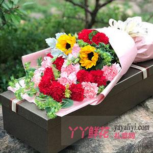 母親節康乃馨送16枝雙色康乃馨2枝向日葵