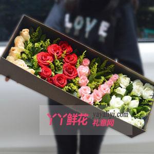 滿世界的愛-33枝混色玫瑰花束禮盒