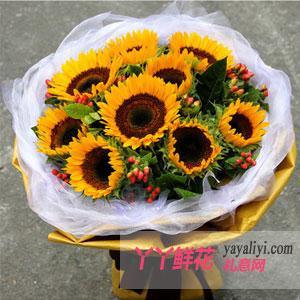 甜甜的祝福:鮮花9枝向日葵網上訂花