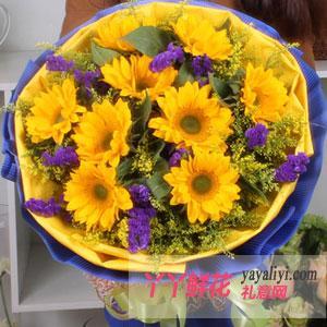 9枝向日葵花店送花