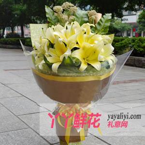 情义无价-鲜花11支黄天霸百合送花