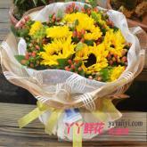 11枝向日葵網上訂花