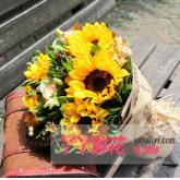 送花8枝向日葵