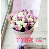 鲜花速递24支白玫瑰