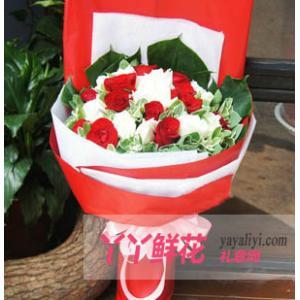 女朋友生日送花27枝红白混色玫瑰