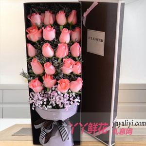 七夕节19朵粉玫瑰配满天星礼盒