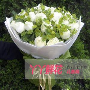 鮮花速遞21支白玫瑰