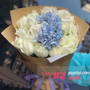 鮮花19枝白玫瑰獨頭包裝