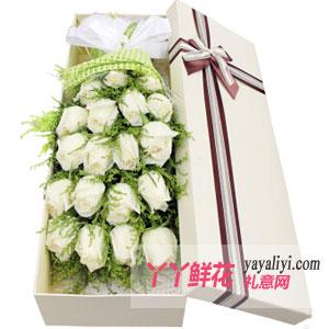 鮮花速遞19枝白玫瑰禮盒