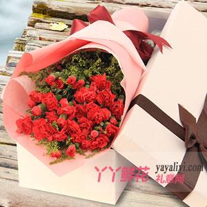鲜花33枝红色康乃馨白色...