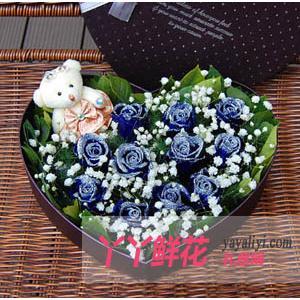 鮮花速遞11枝藍色妖姬花盒1小熊