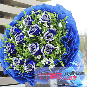 鮮花11枝藍色妖姬