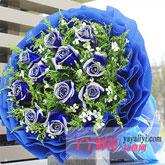 鲜花11枝蓝色妖姬