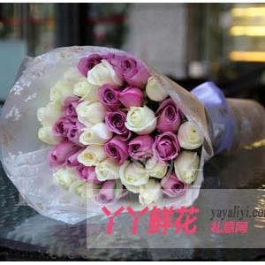 33支紫玫瑰白玫瑰花束