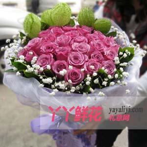 鮮花速遞33支紫玫瑰