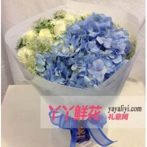 鮮花11支白玫瑰配繡球