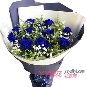 女朋友生日送11朵蓝色妖姬配满天星黄莺