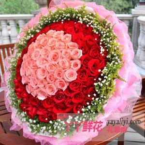 99朵紅玫瑰求婚表白道歉專用