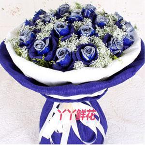 19朵藍色妖姬鮮花配送